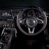 DAMD PERFORMANCE STEERING WHEEL(ND)